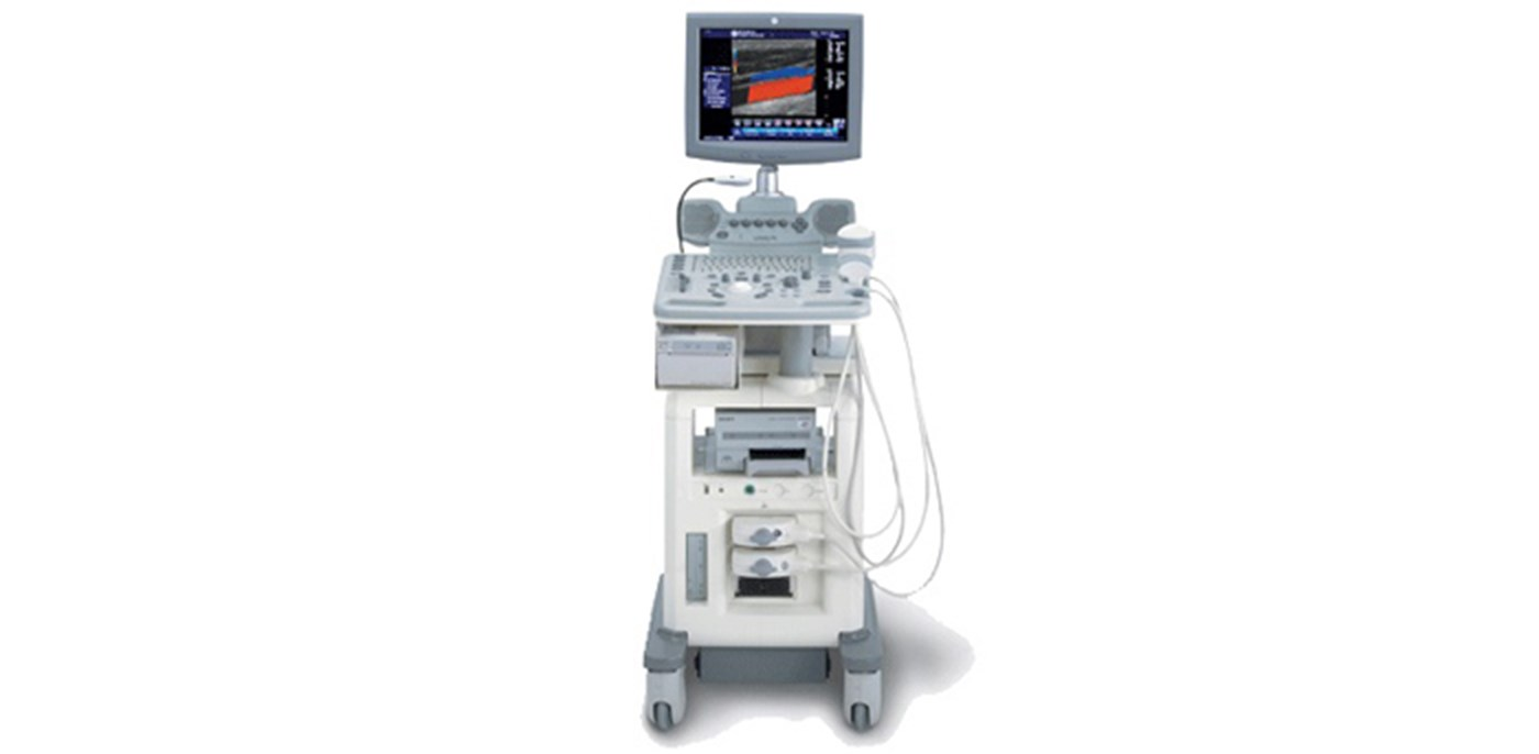 Logiq P5 veterinary ultrasound system