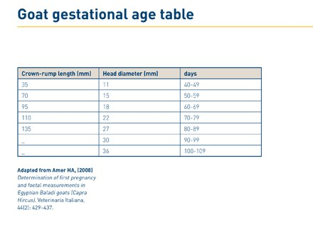 Goat gestational age table photo