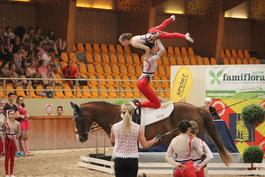 IMV imaging supports Scottish vaulters in bid for European
