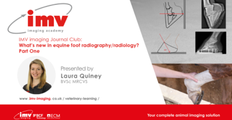 JC.P1 What's new in equine foot radiography.440